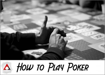 cat-pokerHowToPlay